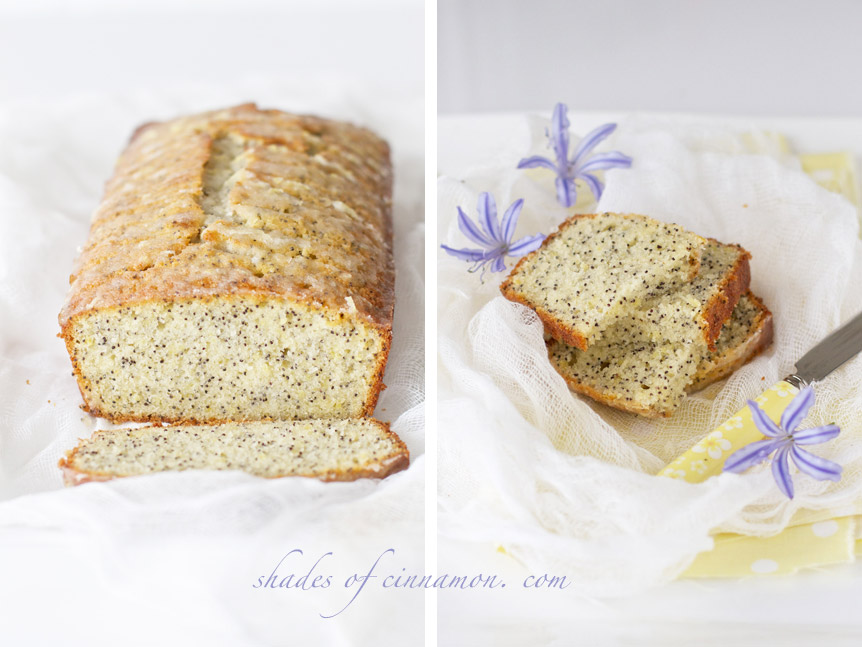 lemon and poppyseed cake