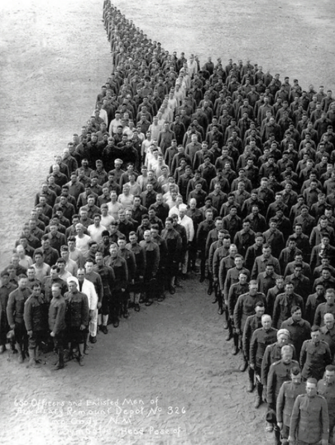 Anzac Day horses