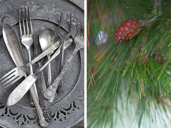 Pinecones and cutlery
