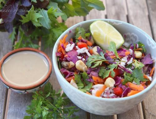 Coconut Rice and thai salad