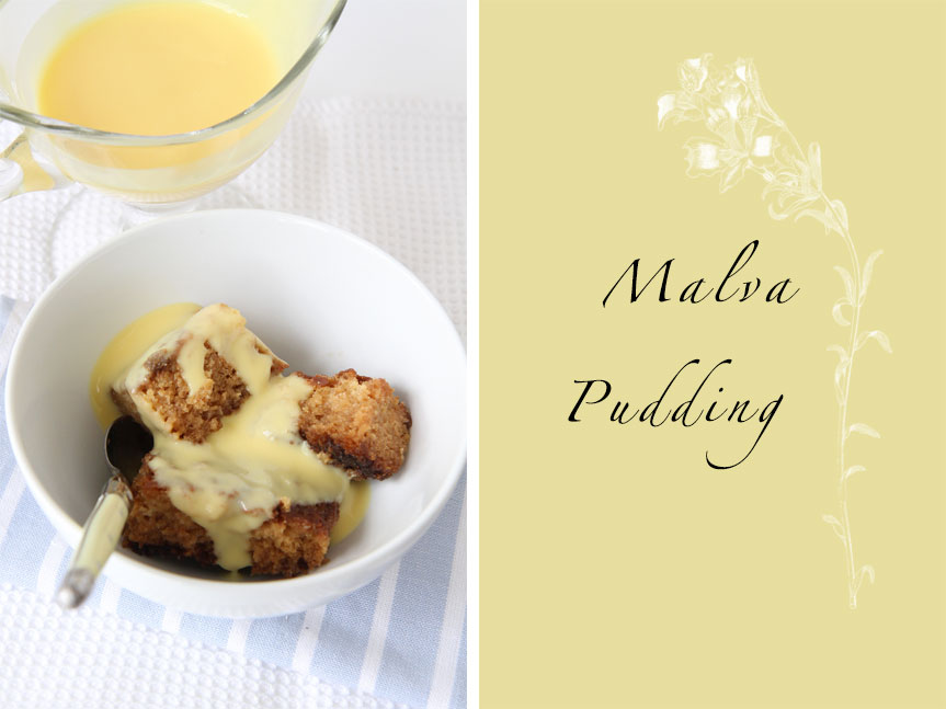 Traditional South African recipe Malva Pudding