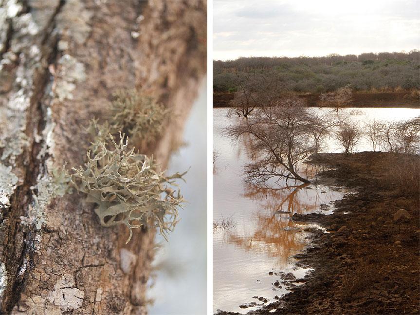 winter in zululand