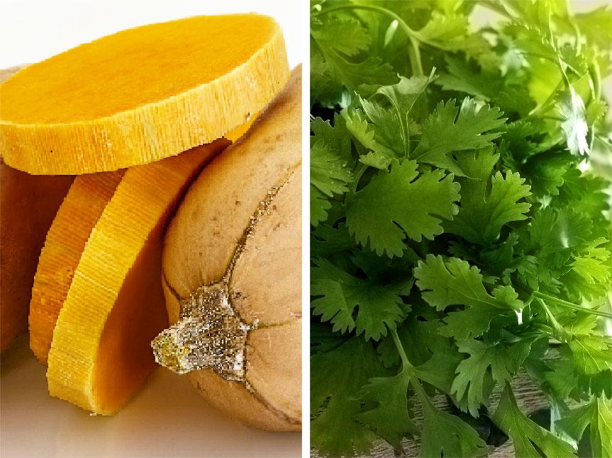 Cilantro and butternut