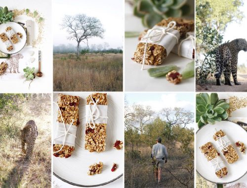 Granola bars for energy on safari
